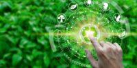 Eco-Eficiencia: El Nuevo Argumento de la Competitividad Empresarial